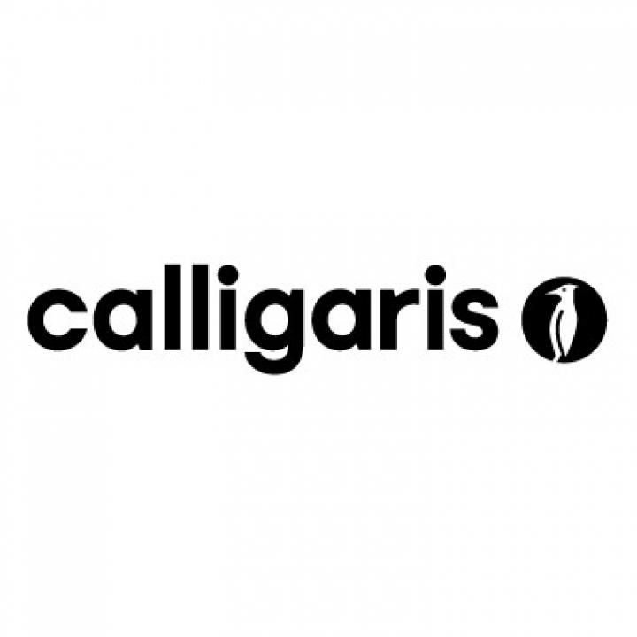Marchi arredamento torino arredamenti traiano for Calligaris arredamenti catalogo